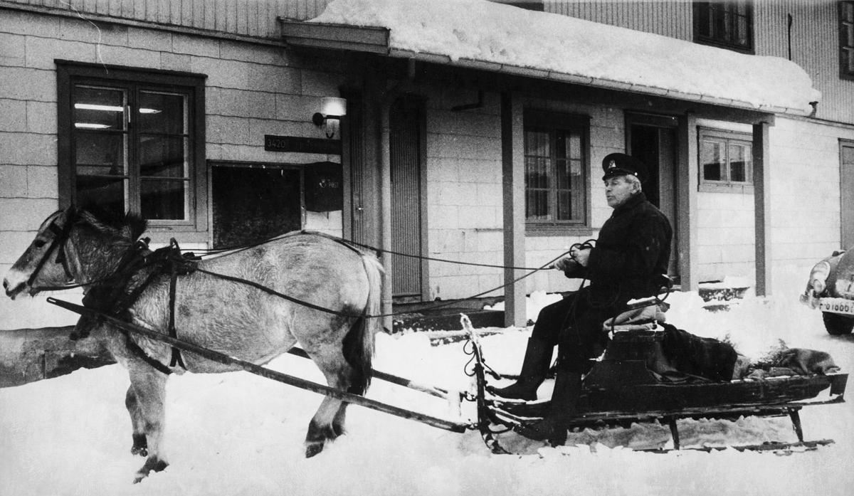 transport, hest, Lierskogen, hest, slede, mann