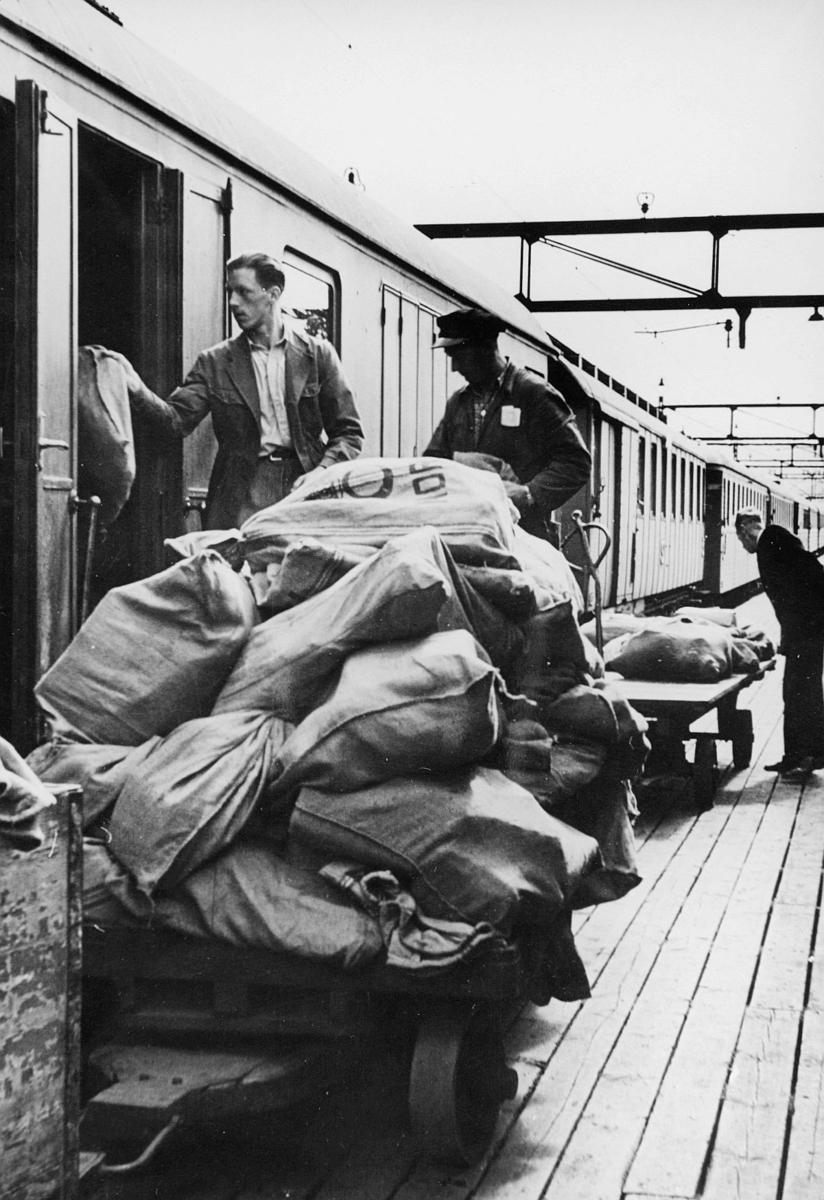 transport, tog, lossing, lasting, eksteriør, postsekker, tre menn