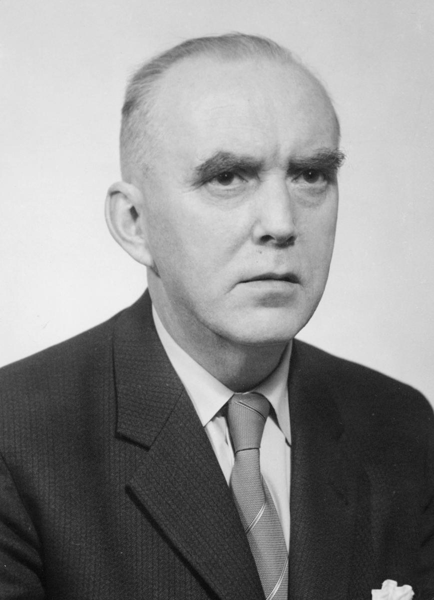 distriktssjef, Hylin Fritjof Walter, portrett