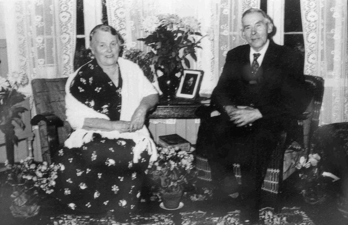 Bilder fra Birkenes kommune G. og R. Repstad ca 1959