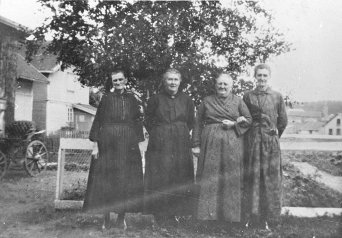 Gruppebilde. Fire eldre damer foran et tre.