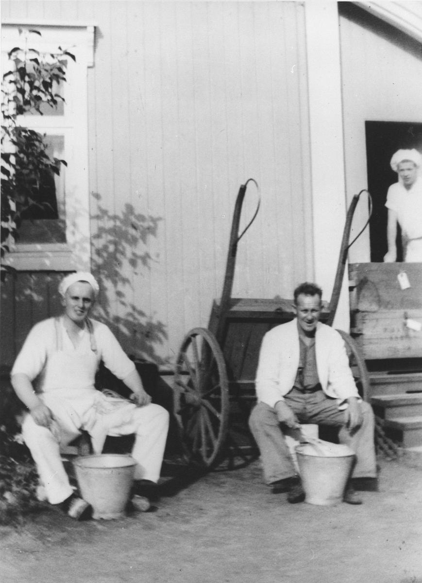 Pisking av sukkerbrødrøre. H. Aanerud, R.Bjørnstad og O.Hansen.