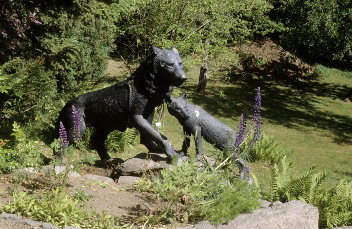 Asker Museum, forsommeren 1996. Skulptur av Ulv el.l. laget av Anne Grimdalen, hagen på Asker museum.