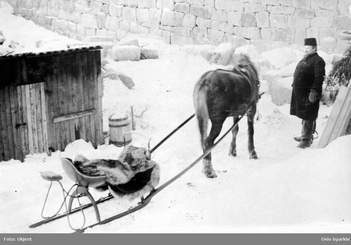 Hest og slede på demningsanlegg - vinterbilde