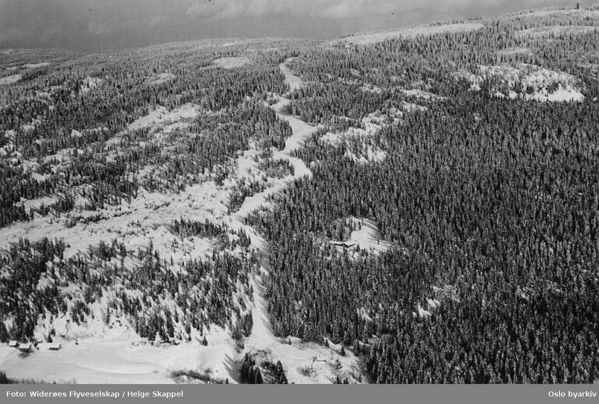 Wyllerløypa, skianlegg for alpinsport. Utfor / storslalåm-bakke. (Flyfoto)