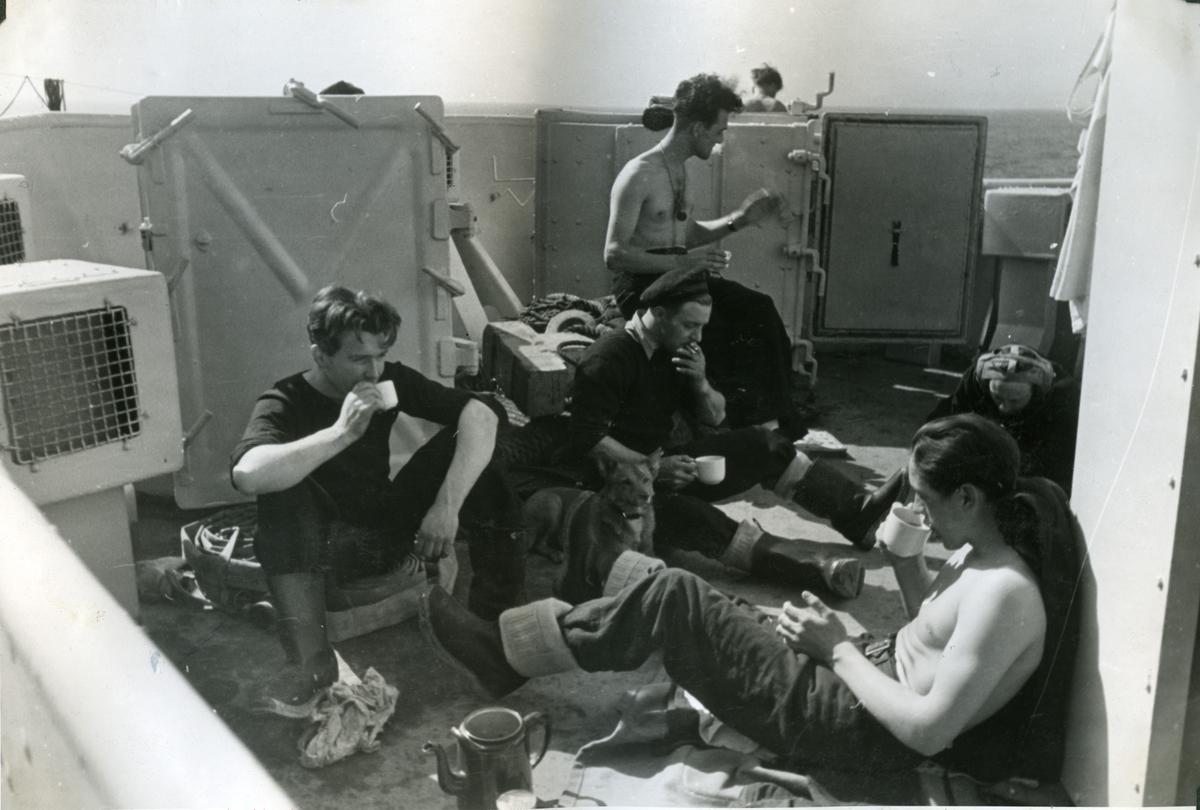 """Album Glaisdale H.Nor.M.S. """"Glaisdale"""". Fotograf: Ltn. Holter. Noen av mannskapet etter tjeneste under patruljering i Atlanterhavet."""