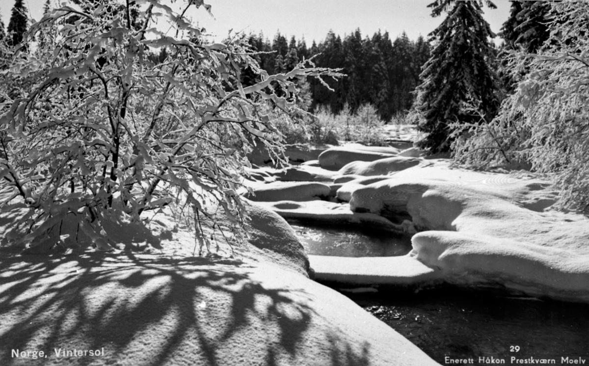Vintersol, vinterstemning, elv med is, snødekte trær, Ringsaker. Bildet er tatt der Koloa renner ut i Moelva. (Like ved Kvernstubrua) Postkort. Norge. Vintersol. Enerett Håkon Prestkværn, Moelv No. 29.