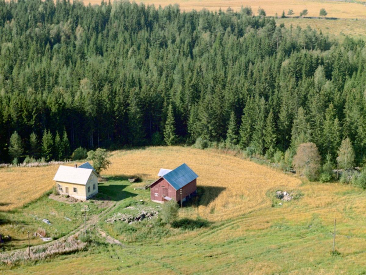 Flyfoto, Dyrihagen, Engemogutua, Løten.