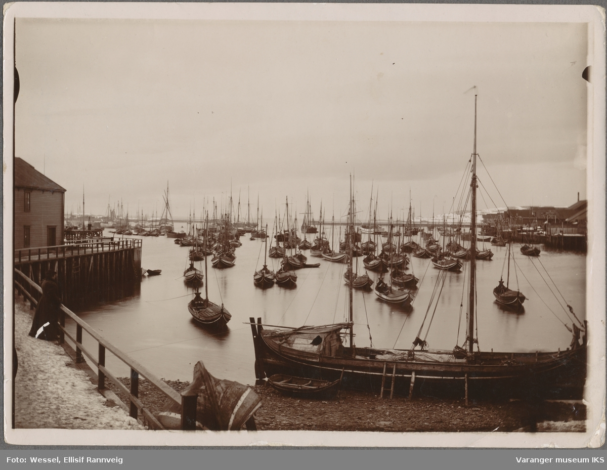 Vardø havn, ca. 1900