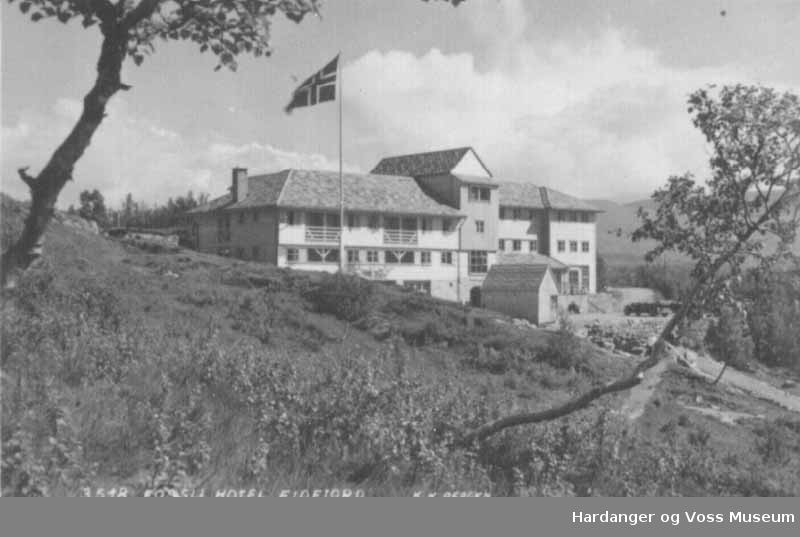 Hus, hotell, tre, flaggstang, postkort. Fossli Hotell