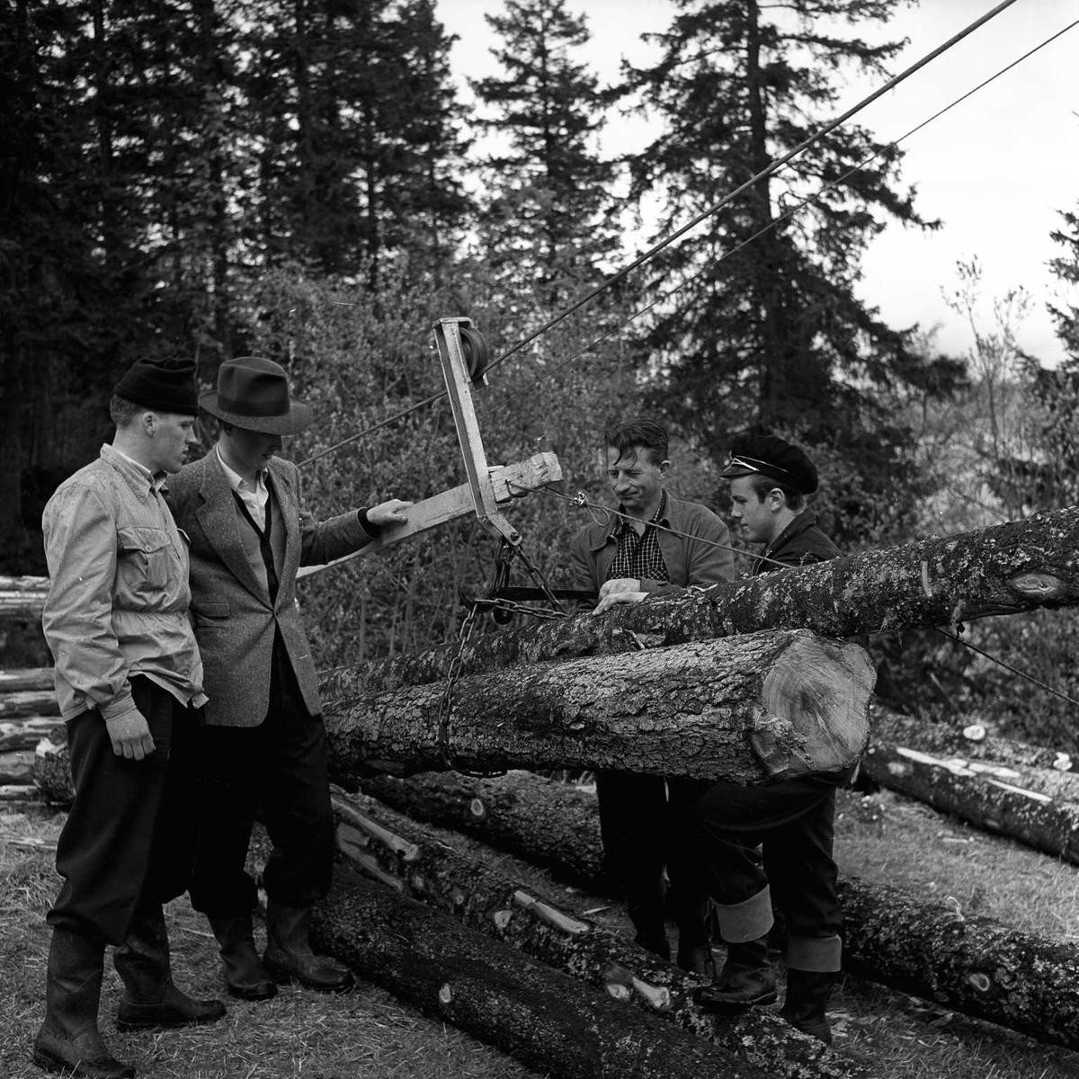 Tømmertransport i Trollaveien