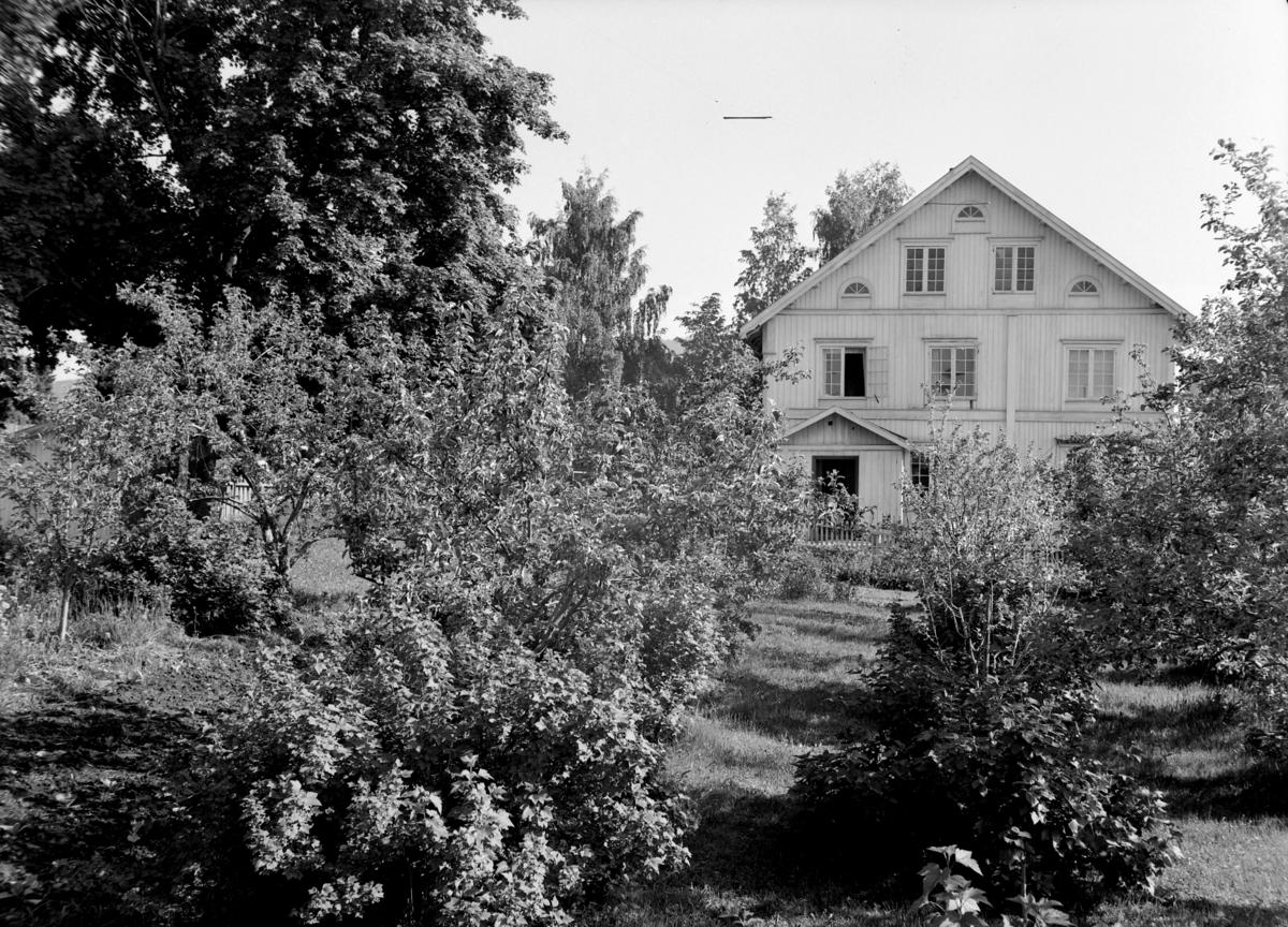 Mo gård, Moelv, hovedbygningen, frukthage.