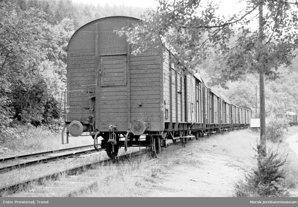 Lukkede godsvogner litra G4 på Trolla sidespor
