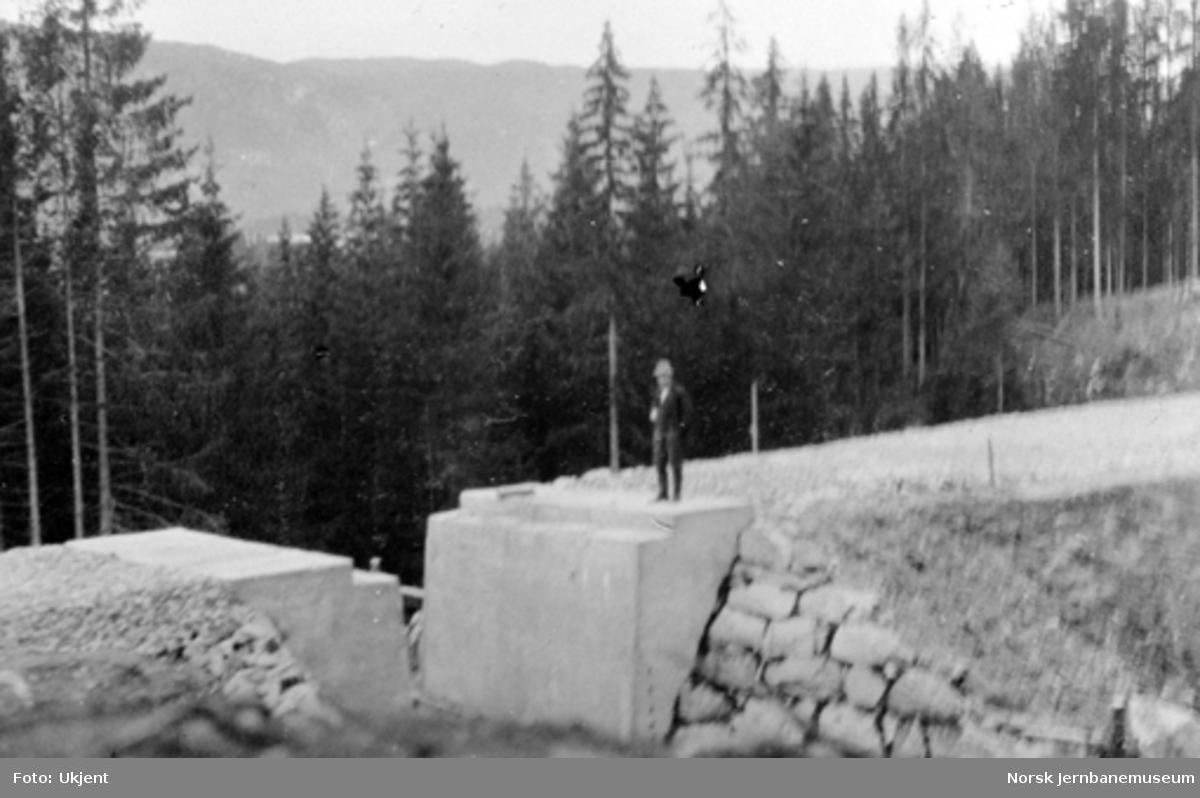 Planert trasé med undergang ved Stueberget, pæl 1533 + 1