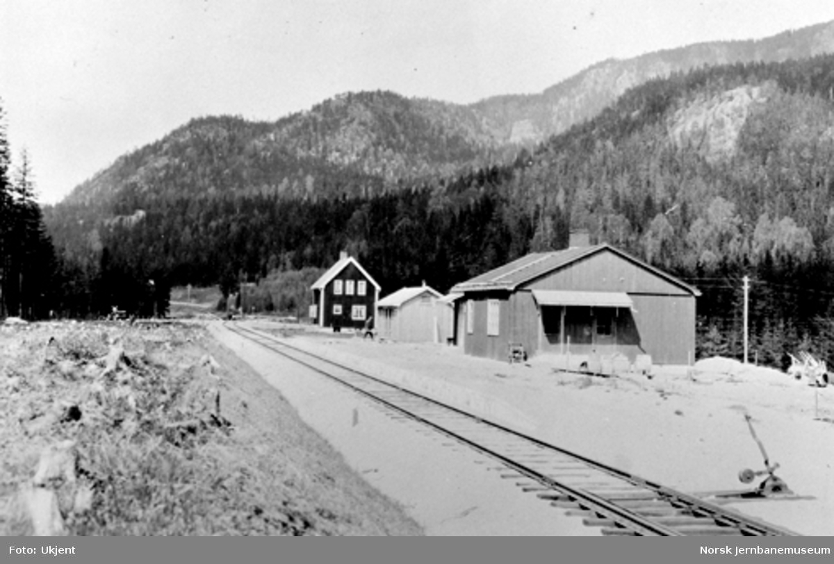 Stasjonsbygning, uthus og vokterbolig ved Ringmoen stoppested, sett nordover