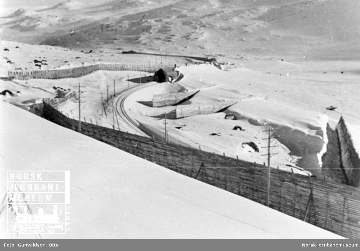 Avlagring i snøskjermer ved Tunga