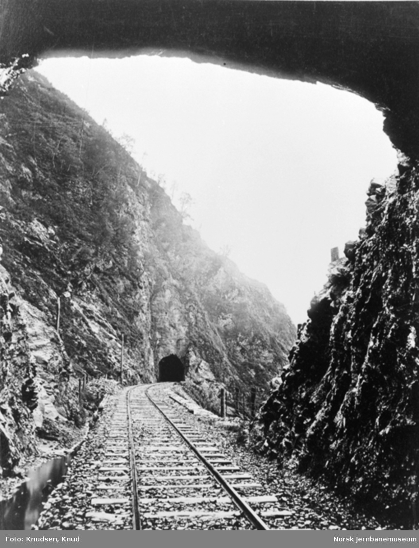 Parti fra Vossebanen; tunneler ved Trengereid