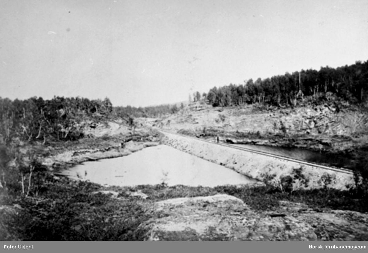 Jernbanen på fylling over Guldsmedtjernet ved Røros