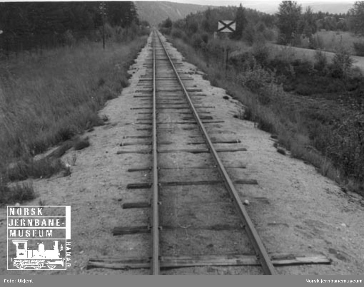 Linjen ved Evje med orienteringsskilt for planovergang