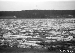 Tømmer i Glomma etter isgang i Hovda elv