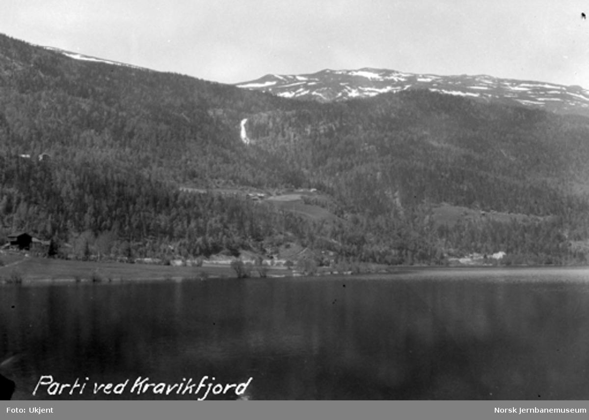 Parti ved Kravikfjorden