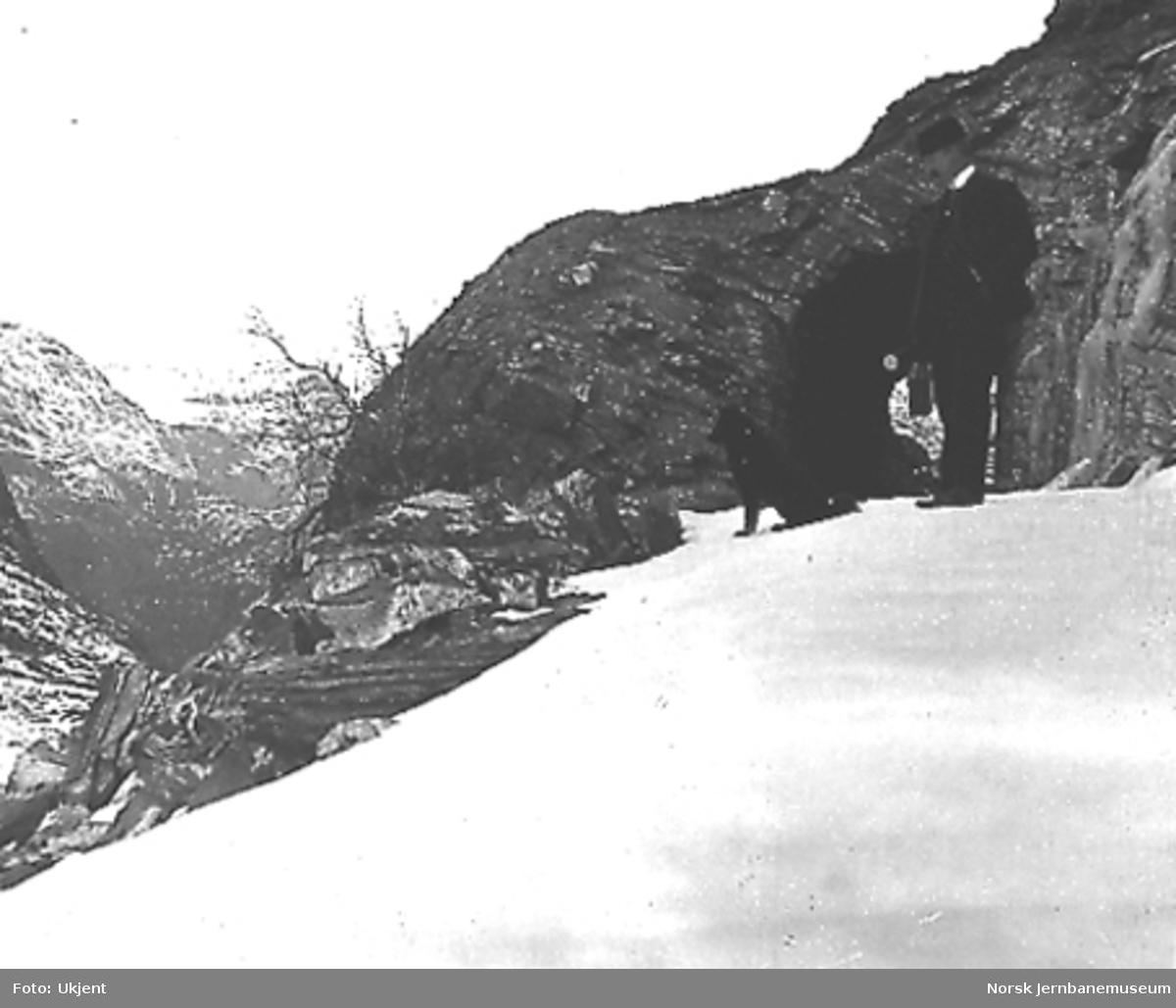 Tunnelinnslag, trolig mellom Hallingskeid og Myrdal, mann med hund i forgrunnen
