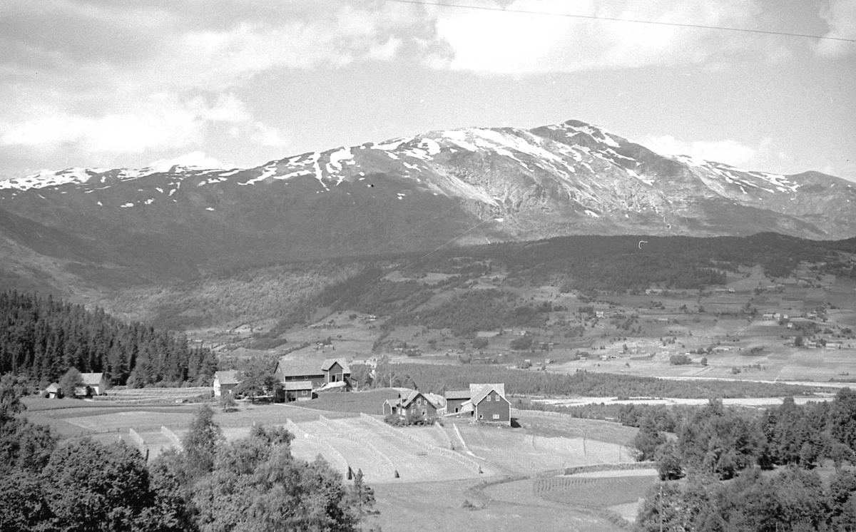 Bilder fra Auro med Lønahøgdi i bakgrunnen. Voss i Hordaland.