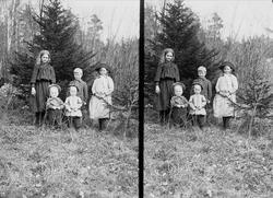 Gruppeportrett av fem søsken Q. Wiborg i krattskogen, Digeru