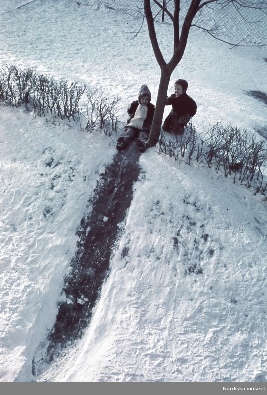 Barn åker iskana.