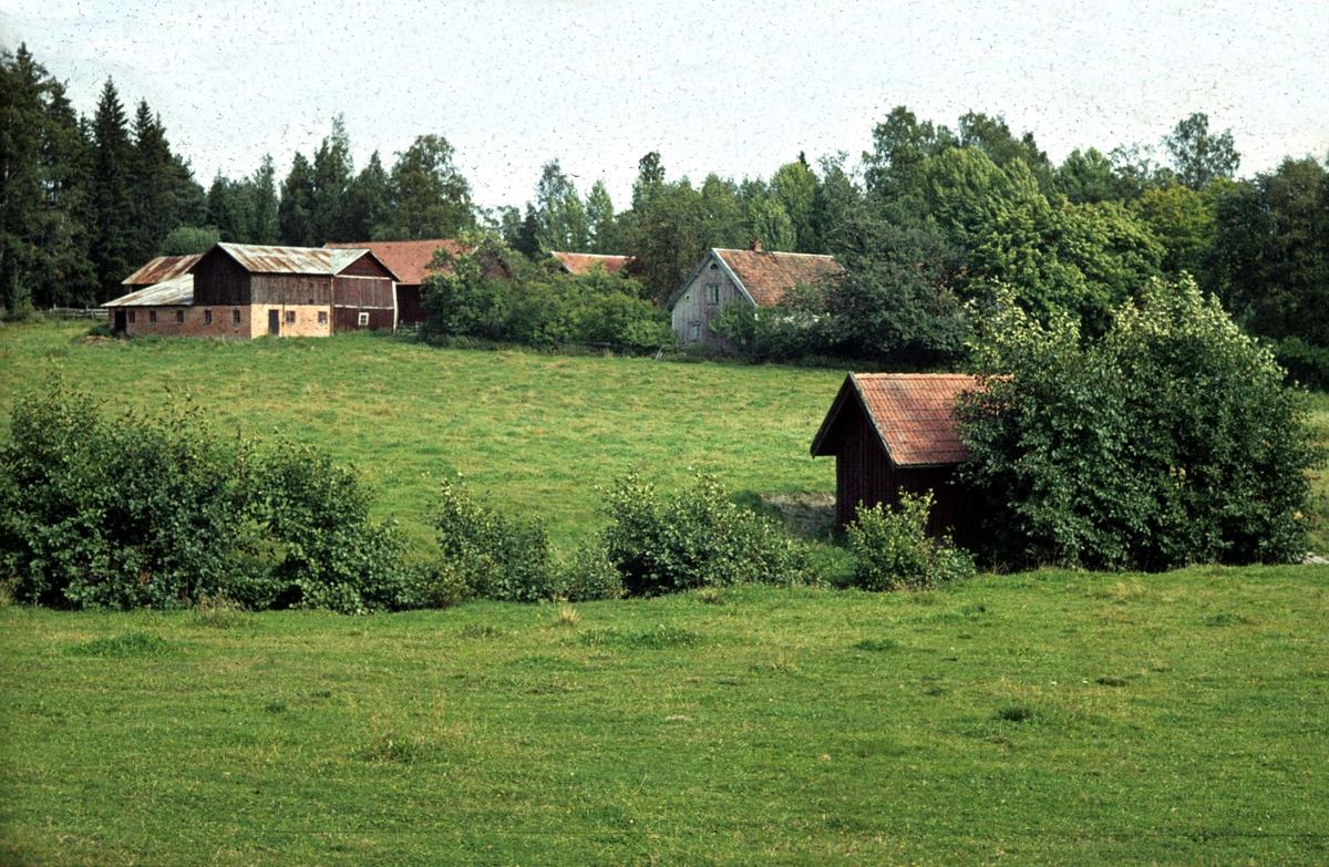 Boplatser och mossfynd. Sten-, brons- och jrnlder i Norrtlje