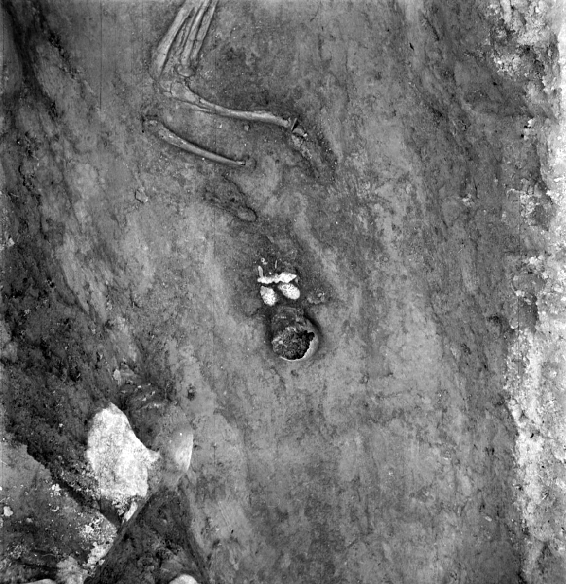Prästgården, skelett med smyckeuppsättning grav 36 - Arkeologi Gamla Uppsala 1973