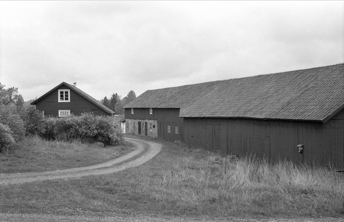 Uthus, ladugård, stall och lada, Oxsätra 1:17, Bälinge socken, Uppland 1983