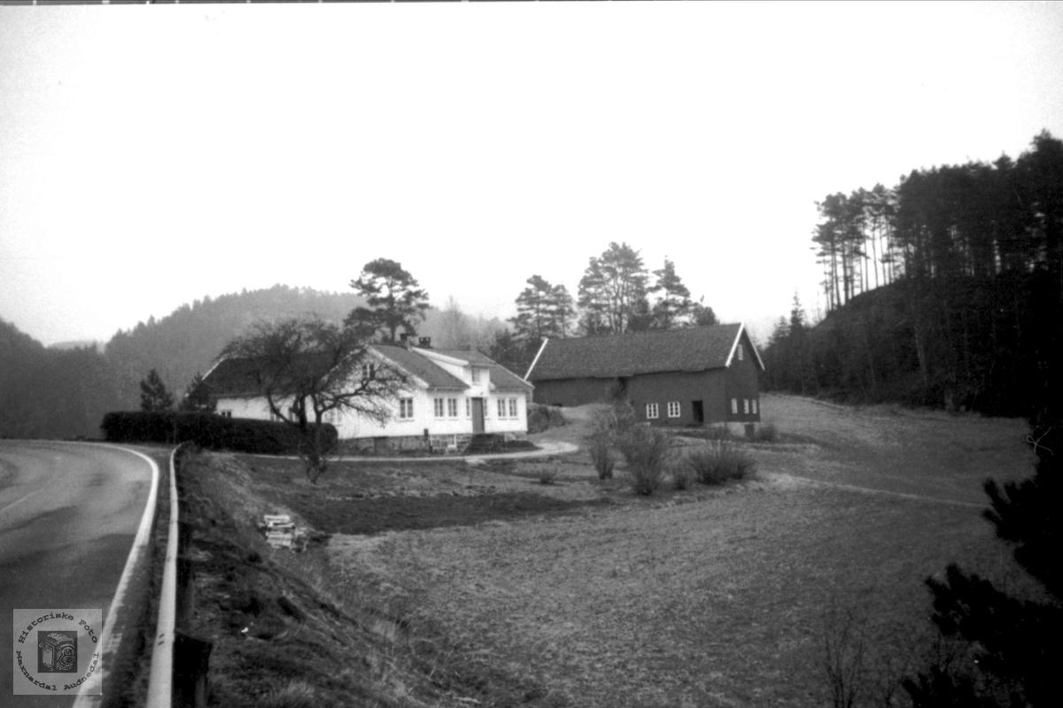 Broneset - ytre Homme i Bjelland.