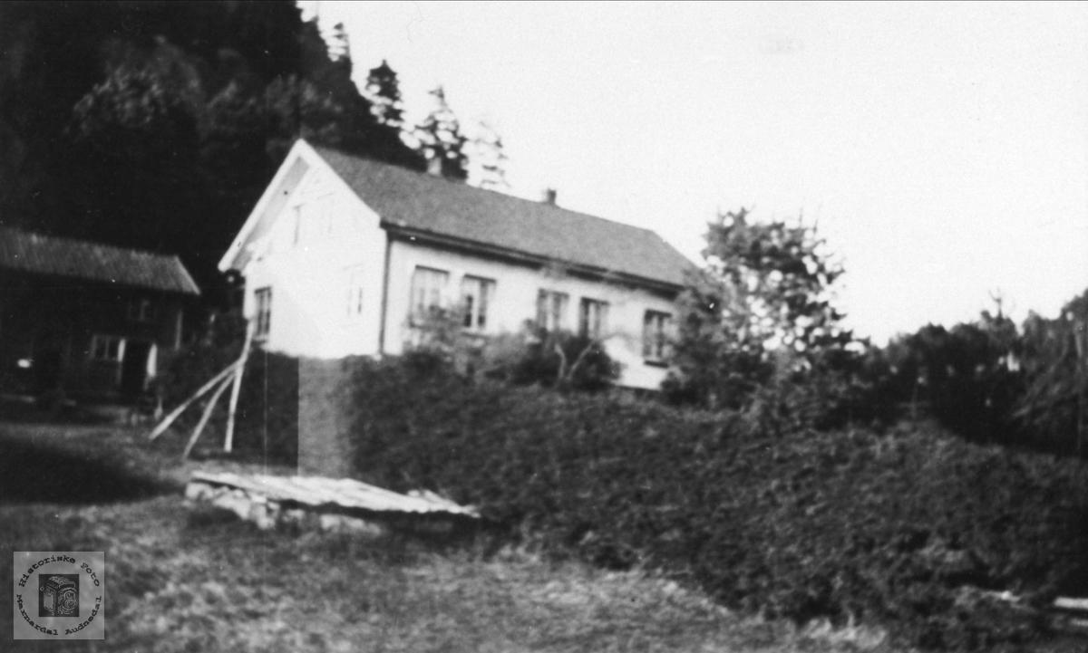 Skjævesland Gård, Øyslebø.