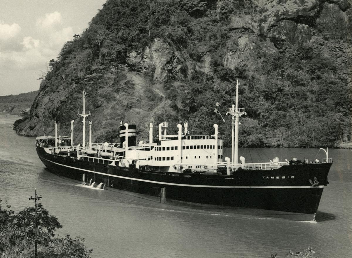 M/S Tamesis (b.1950, Charles Connell & Co. Ltd., Glasgow)