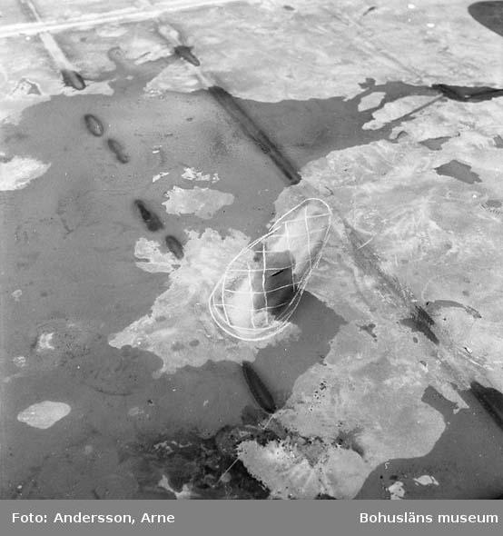 Skyddet: Dokumentation av märke efter lyftöra som lossnat.
