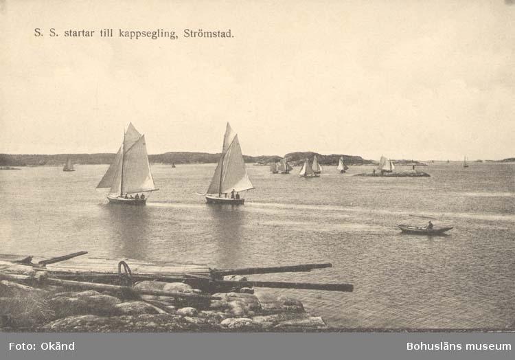 """Tryckt text på kortet: """"S. S. Startar till kappsegling, Strömstad.""""  """"Förlag: Frida Dahlgren, Garn- & Kortvaruaffär."""""""