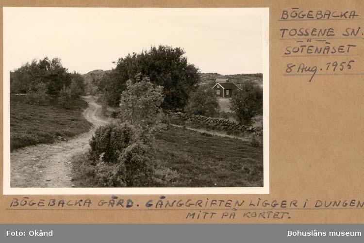 """Noterat på kortet: """"Bögebacka Tossene Sn. Sotenäset."""" """"Bögebacka gård. Gånggriften ligger i dungen mitt på kortet."""" """"Aug. 1955."""""""