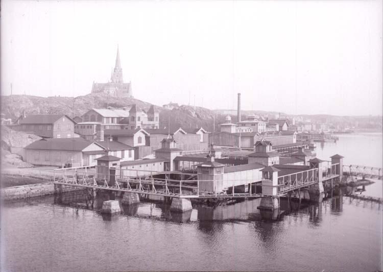 """Enligt text som medföljde bilden: """"Lysekil, Bassinerna Mars 1911."""" ::"""
