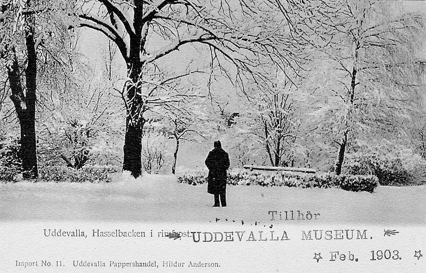 """Tryckt text på vykortets framsida: """"Uddevalla. Hasselbacken i rimfrost""""."""