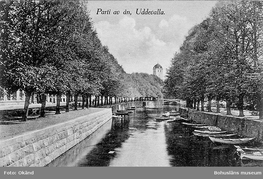 """Tryckt text på vykortets framsida: """"Parti av ån, Uddevalla"""".  ::"""