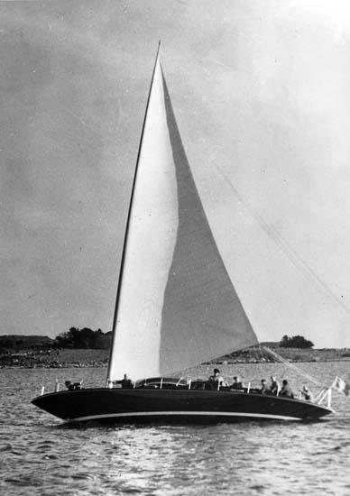 Ljungströmsbåten Twing-Wing 620