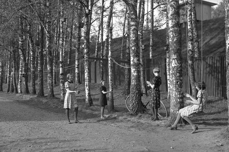 """Enligt fotografens noteringar: """"3 st. 1938. 24. Flickor och björkar vid Tången Munkedal""""."""