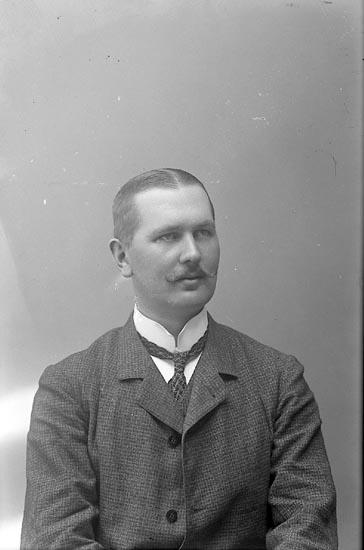"Enligt fotografens journal nr 1 194-1908: ""Sahlberg Herr Ingeniör Mauritz Norrköping""."