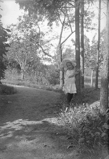 """Enligt fotografens journal nr 1 1904-1908: """"Sjögreen, Sunniva, Källsby, Jörlanda""""."""