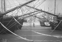"""Text till bilden: """"Hamnen. Skärhamn 1944""""."""