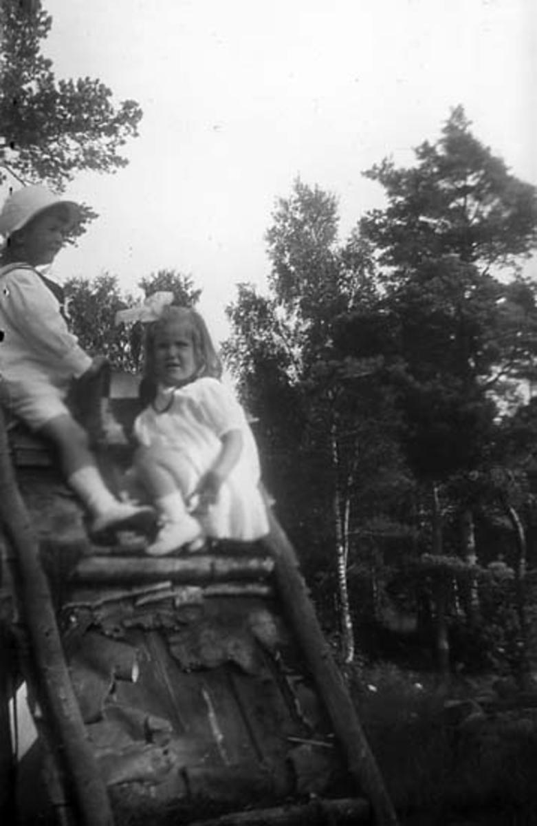 Fotografi ur familjen Lithanders album
