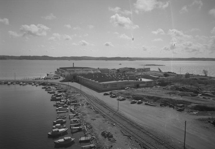 """Text till bilden: """"Grötö. Utsikt från fyren. 1959"""""""
