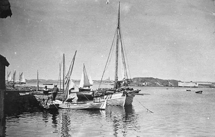 """Bildtext till kopian i fotoalbumet: """"Karl Johansson f. 1898, lossar ved vid Hermanssons brygga, med jakten Nordstjernan år 1929""""."""