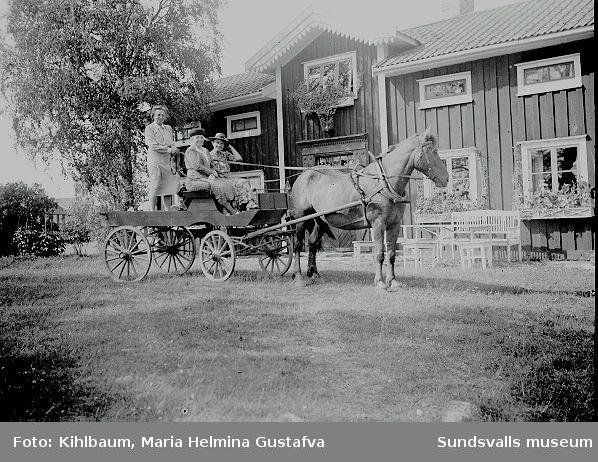 Tre kvinnor på en hästkärra.